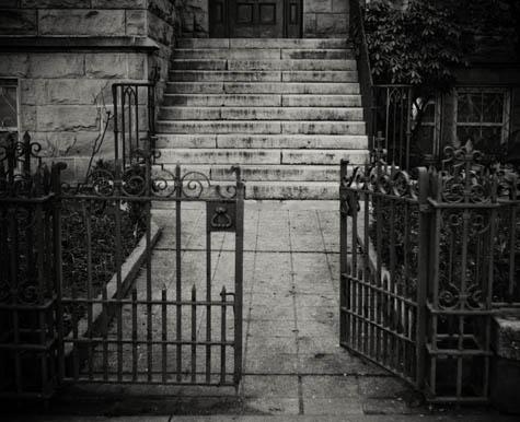 Gate & Steps