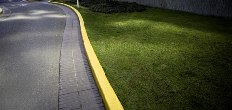 Curb & Grass
