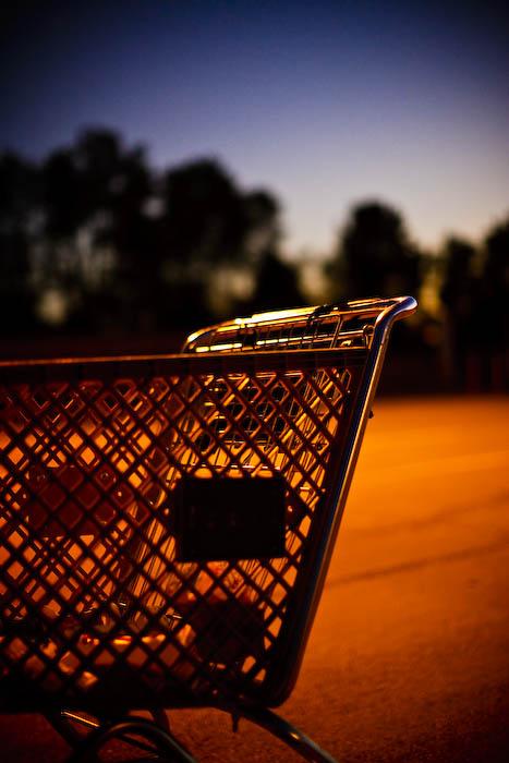 Shopping Carts In Orange Light