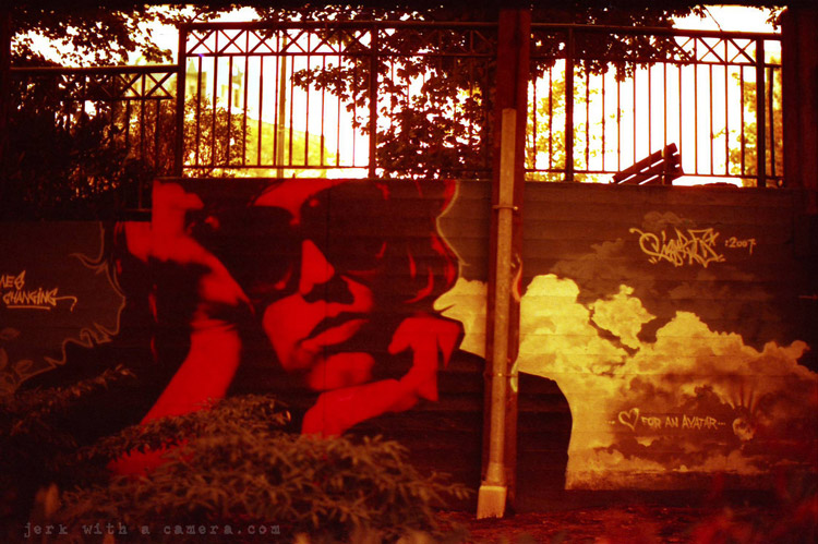 Redscale Photography