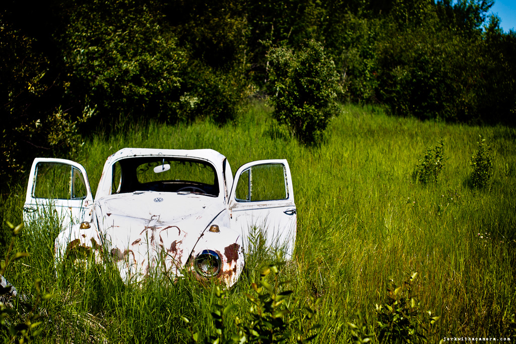 Road Trip To Alberta – Old Cars