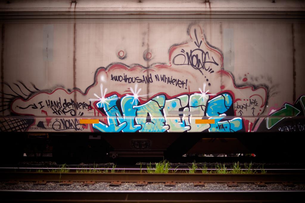 _MG_0961