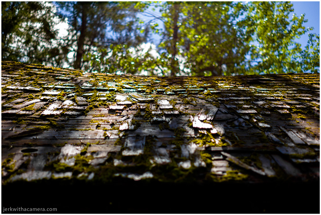 A Cabin in the woods - Roof