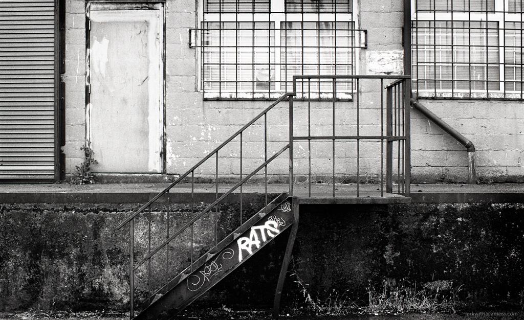 Nikon-F100---Roll-001018