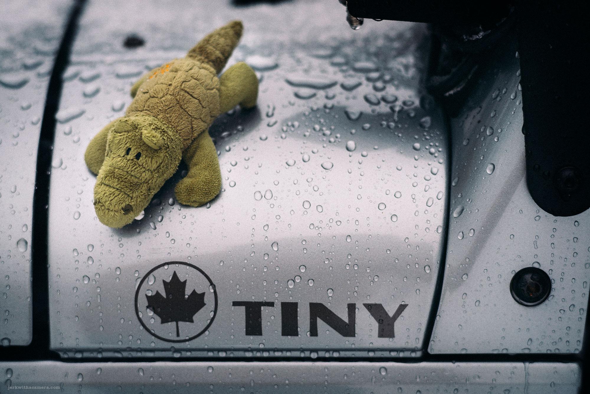 Tiny has a mascot!